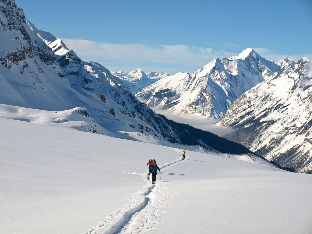 Uptrack Campbell Icefield (photo credit: Todd Leeds)